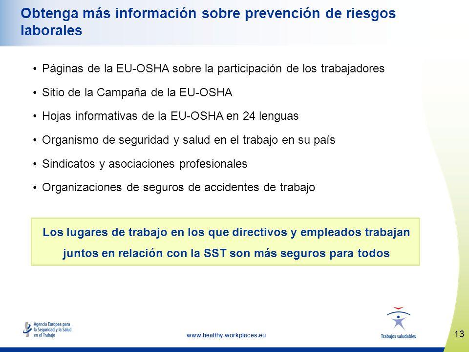 13 www.healthy-workplaces.eu Obtenga más información sobre prevención de riesgos laborales Páginas de la EU-OSHA sobre la participación de los trabaja