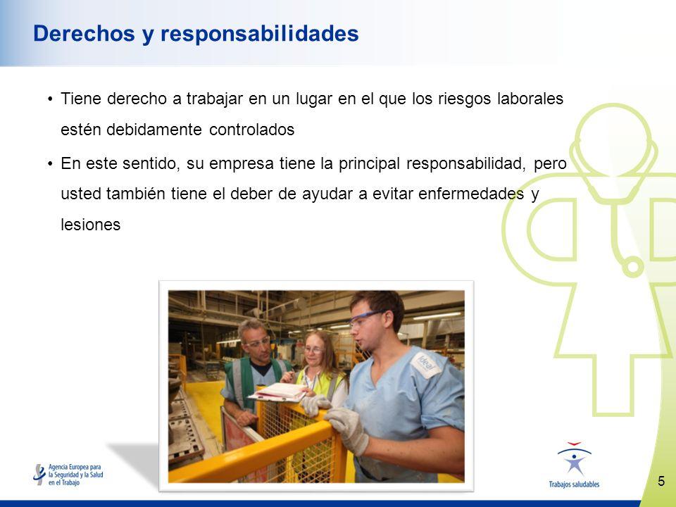 5 www.healthy-workplaces.eu Derechos y responsabilidades Tiene derecho a trabajar en un lugar en el que los riesgos laborales estén debidamente contro