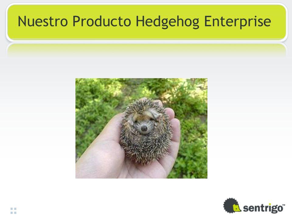 Nuestro Producto Hedgehog Enterprise