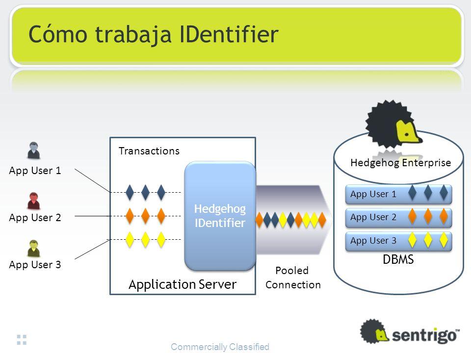 Application Server Hedgehog IDentifier App User 1 App User 2 App User 3 Transactions Pooled Connection DBMS App User 1 App User 2 App User 3 Hedgehog