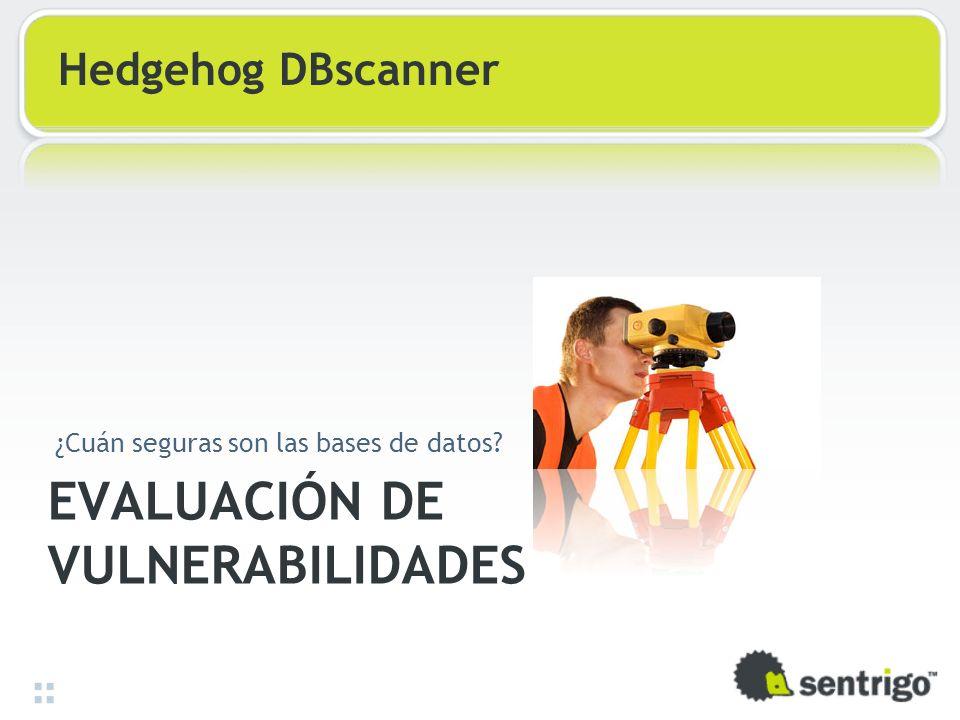 EVALUACIÓN DE VULNERABILIDADES ¿Cuán seguras son las bases de datos? Hedgehog DBscanner