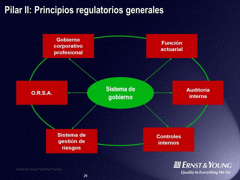 24 Sistema de gobierno Global Solvency II Taskforce Training Pilar II: Principios regulatorios generales Gobierno corporativo profesional Función actuarial Auditoría interna Controles internos Sistema de gestión de riesgos O.R.S.A.