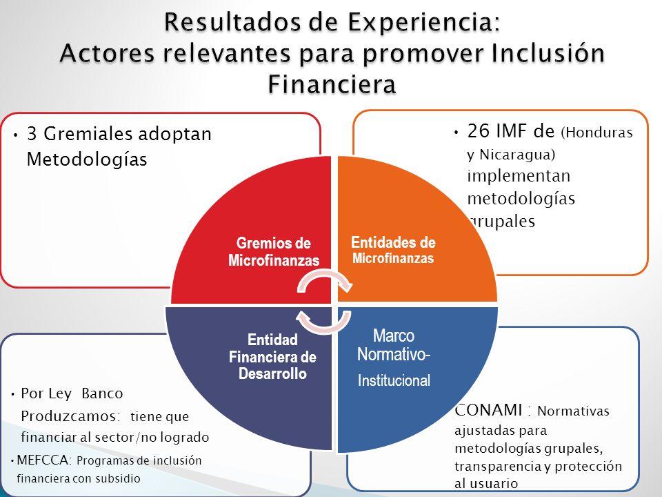 CONAMI : Normativas ajustadas para metodologías grupales, transparencia y protección al usuario Por Ley Banco Produzcamos: tiene que financiar al sector/no logrado MEFCCA: Programas de inclusión financiera con subsidio 26 IMF de (Honduras y Nicaragua) implementan metodologías grupales 3 Gremiales adoptan Metodologías Gremios de Microfinanzas Entidades de Microfinanzas Marco Normativo- Institucional Entidad Financiera de Desarrollo