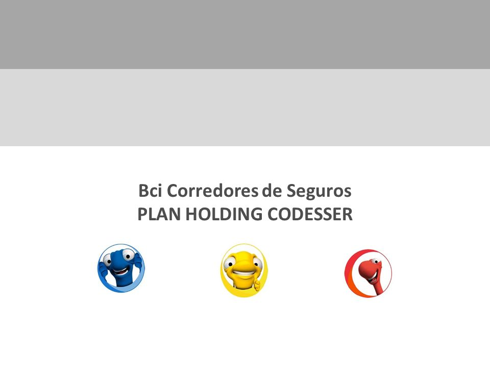 Bci Corredores de Seguros PLAN HOLDING CODESSER