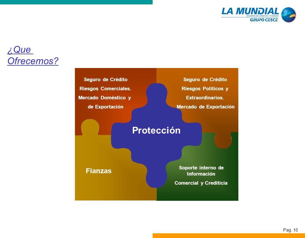 Pag. 10 ¿Que Ofrecemos? Seguro de Crédito Riesgos Comerciales. Mercado Doméstico y de Exportación Seguro de Crédito Riesgos Políticos y Extraordinario