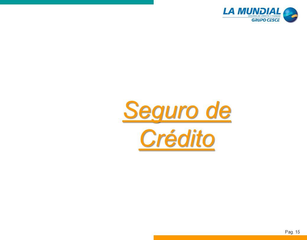 Pag. 15 Seguro de Crédito