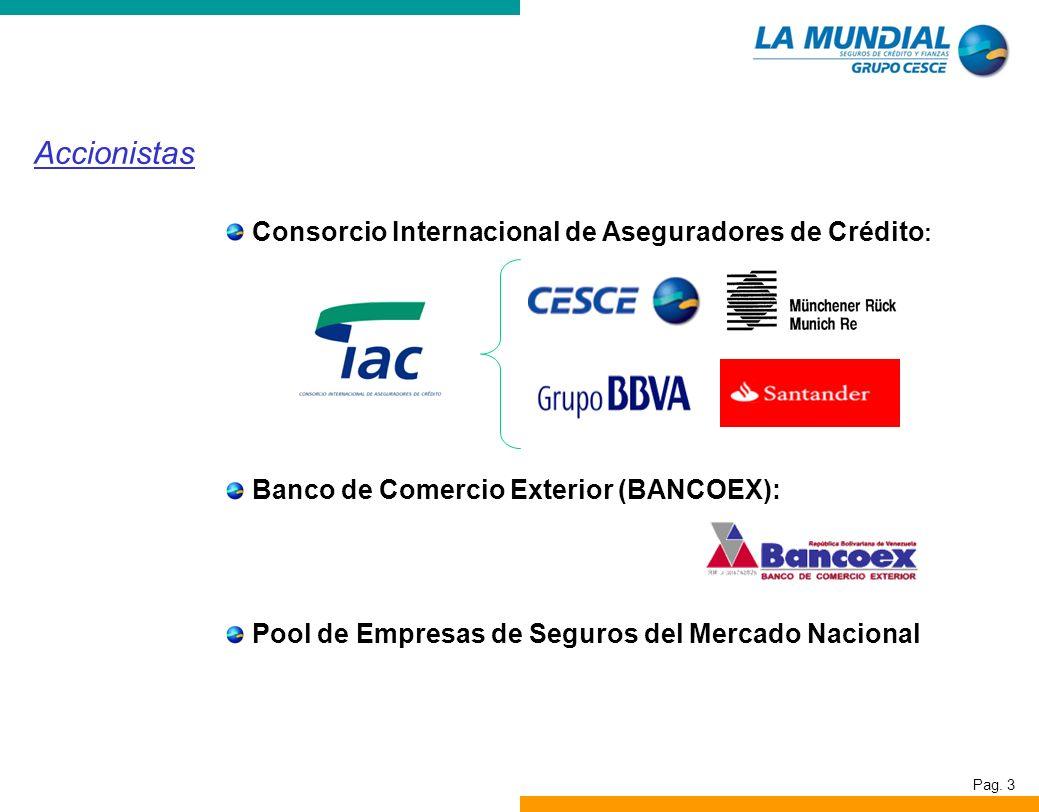 Pag. 3 Consorcio Internacional de Aseguradores de Crédito : Banco de Comercio Exterior (BANCOEX): Pool de Empresas de Seguros del Mercado Nacional Acc