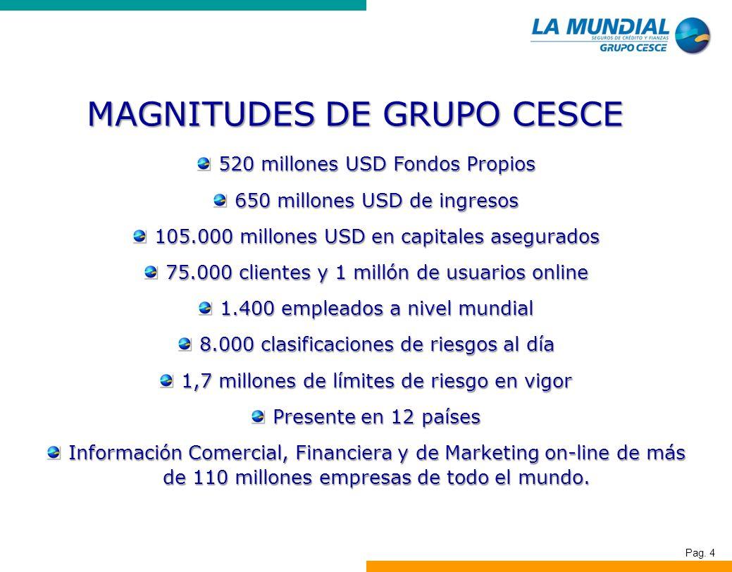 Pag. 4 520 millones USD Fondos Propios 650 millones USD de ingresos 105.000 millones USD en capitales asegurados 75.000 clientes y 1 millón de usuario