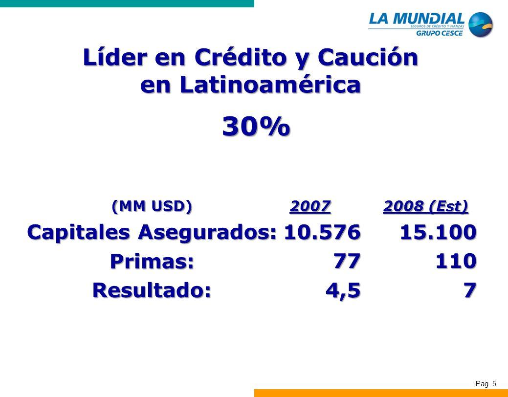 Pag. 5 Líder en Crédito y Caución en Latinoamérica 30% (MM USD) Capitales Asegurados: Primas:Resultado: 200710.576774,5 2008 (Est) 15.1001107
