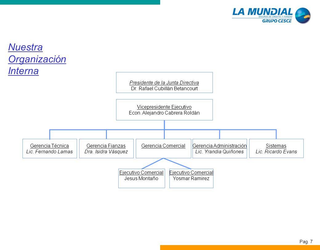 Pag. 7 Nuestra Organización Interna Junta Directiva Presidente de la Junta Directiva Dr. Rafael Cubillán Betancourt Vicepresidente Ejecutivo Econ. Ale