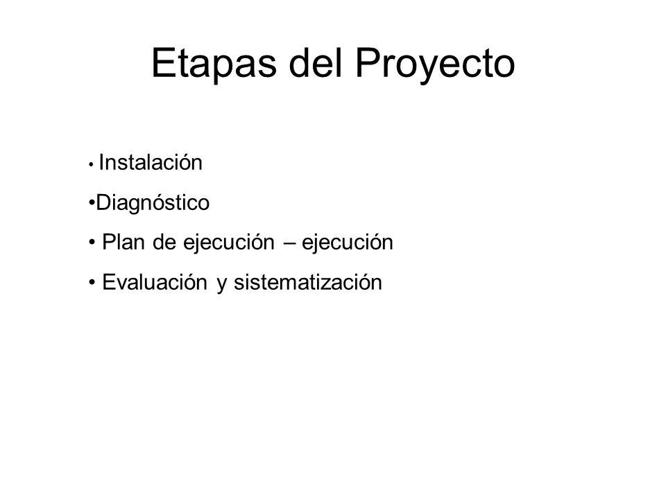 Etapas del Proyecto Instalación Diagnóstico Plan de ejecución – ejecución Evaluación y sistematización