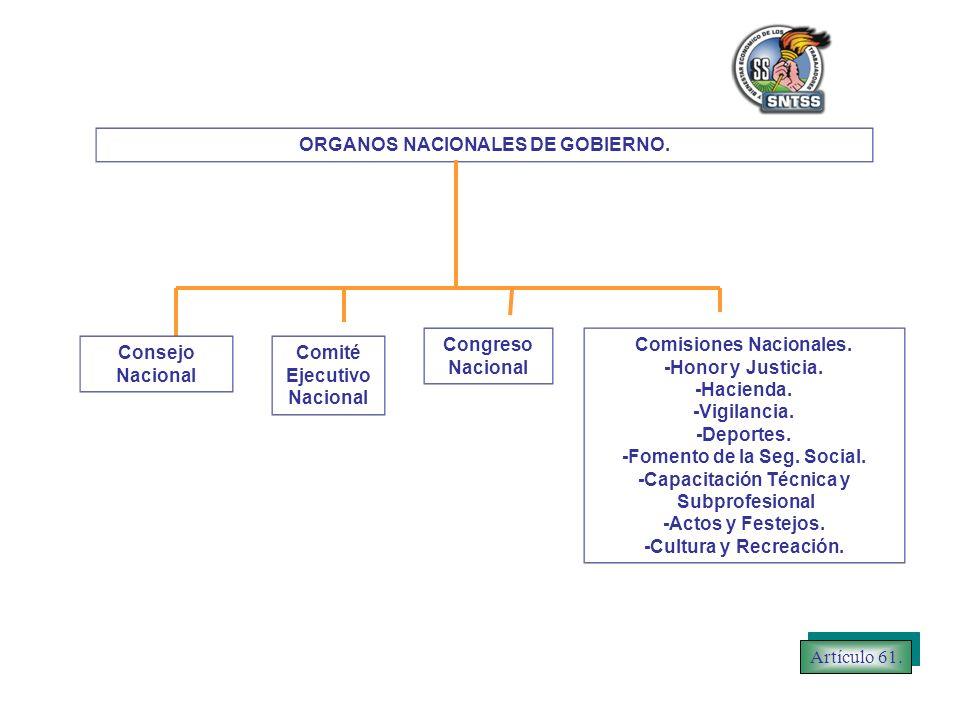 ORGANOS NACIONALES DE GOBIERNO.Comité Ejecutivo Nacional Congreso Nacional Comisiones Nacionales.