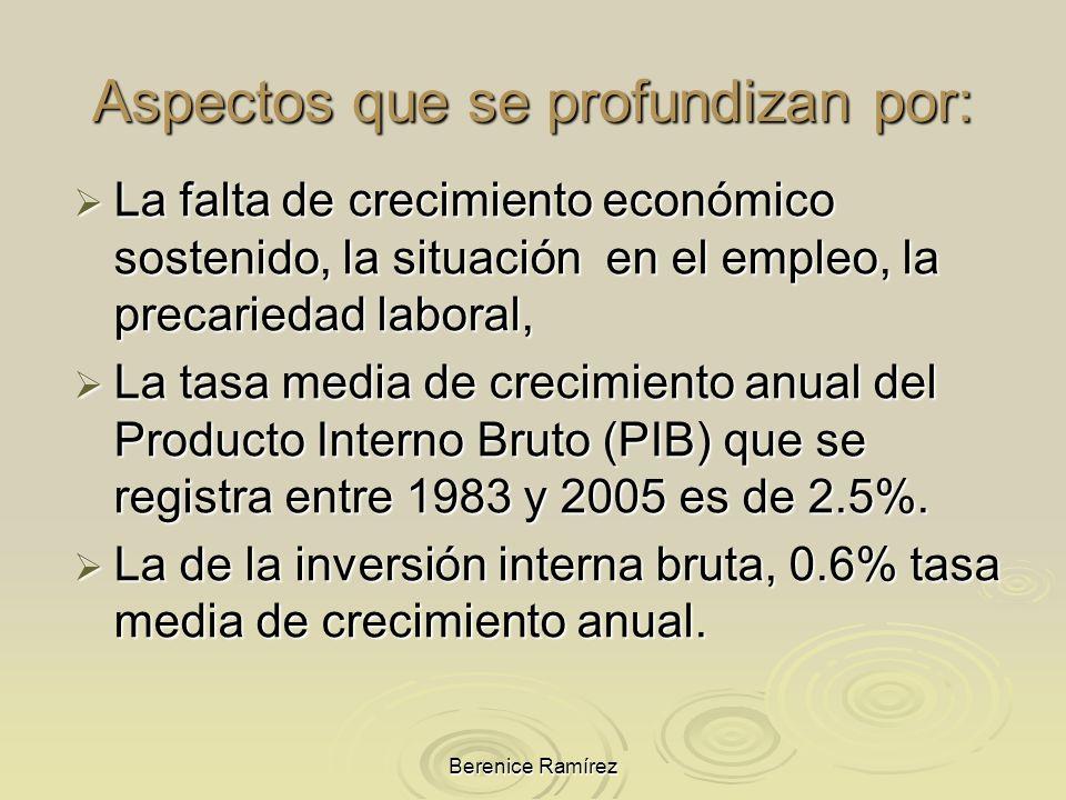 Berenice Ramírez La falta de crecimiento económico sostenido, la situación en el empleo, la precariedad laboral, La falta de crecimiento económico sos