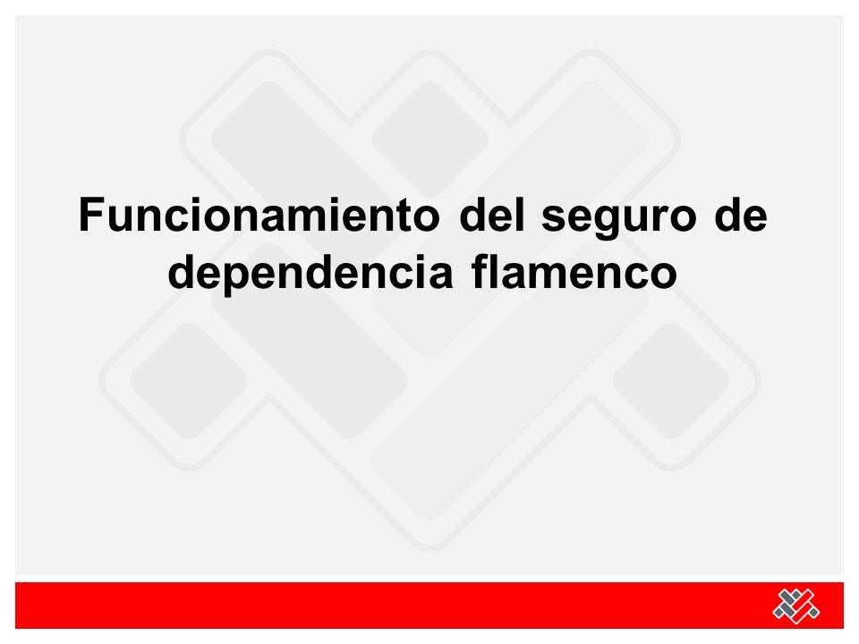 Funcionamiento del seguro de dependencia flamenco