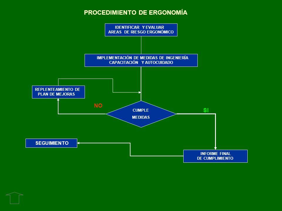 REPLENTEAMIENTO DE PLAN DE MEJORAS IDENTIFICAR Y EVALUAR AREAS DE RIESGO ERGONÓMICO IMPLEMENTACIÓN DE MEDIDAS DE INGENIERÍA CAPACITACIÓN Y AUTOCUIDADO
