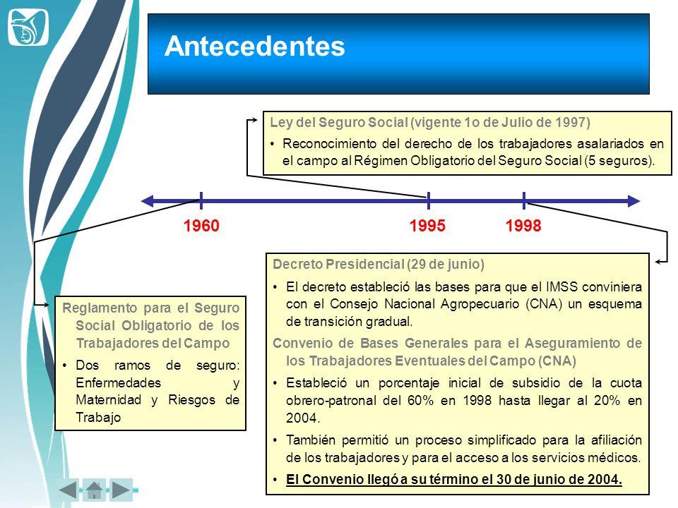 Antecedentes 196019951998 Reglamento para el Seguro Social Obligatorio de los Trabajadores del Campo Dos ramos de seguro: Enfermedades y Maternidad y