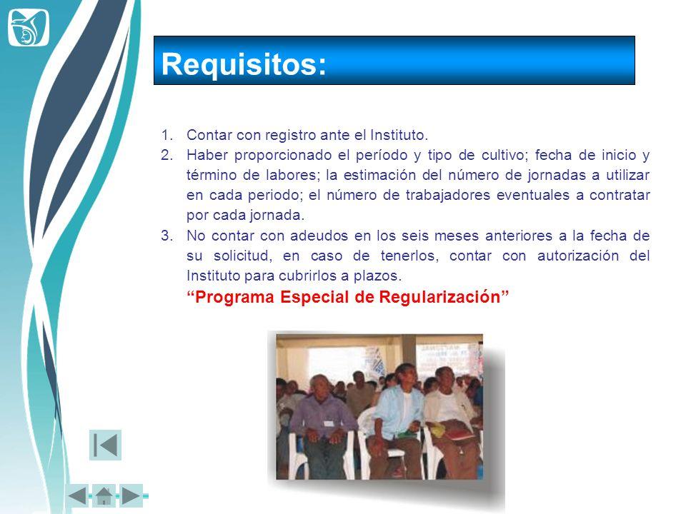 Requisitos: 1.Contar con registro ante el Instituto. 2.Haber proporcionado el período y tipo de cultivo; fecha de inicio y término de labores; la esti