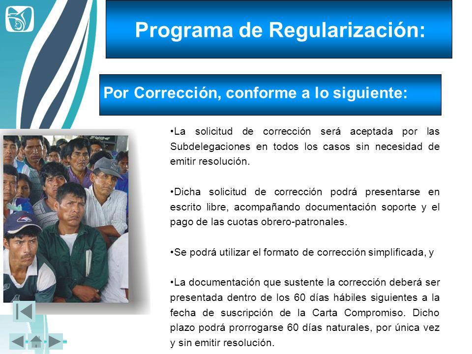 La solicitud de corrección será aceptada por las Subdelegaciones en todos los casos sin necesidad de emitir resolución. Dicha solicitud de corrección