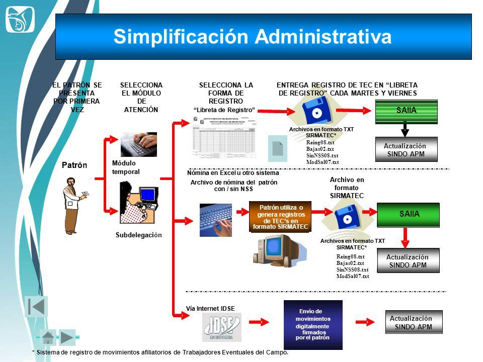 Simplificación Administrativa * Sistema de registro de movimientos afiliatorios de Trabajadores Eventuales del Campo. Módulo temporal Subdelegaci Patr