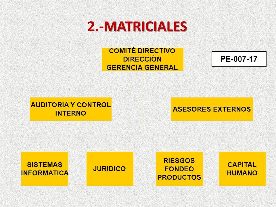 MATRICIALES 2.-MATRICIALES COMITÉ DIRECTIVO DIRECCIÓN GERENCIA GENERAL AUDITORIA Y CONTROL INTERNO ASESORES EXTERNOS SISTEMAS INFORMATICA JURIDICO RIESGOS FONDEO PRODUCTOS CAPITAL HUMANO PE-007-17