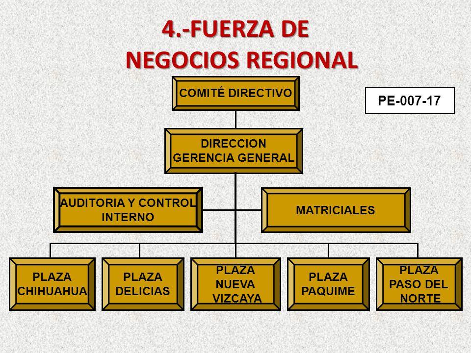 4.-FUERZA DE NEGOCIOS REGIONAL PE-007-17 COMITÉ DIRECTIVO DIRECCION GERENCIA GENERAL AUDITORIA Y CONTROL INTERNO MATRICIALES PLAZA NUEVA VIZCAYA PLAZA PAQUIME PLAZA DELICIAS PLAZA CHIHUAHUA PLAZA PASO DEL NORTE