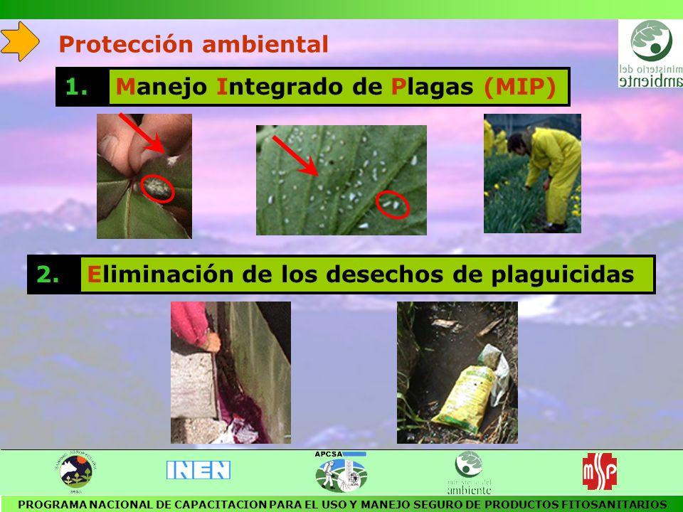 SUELO NO ARENOSO AREA SIN PELIGRO DE INUNDACION 5 m 3 m ENTIERRO DE LOS ENVASES DE DESECHO DE PLAGUICIDAS PROGRAMA NACIONAL DE CAPACITACION PARA EL USO Y MANEJO SEGURO DE PRODUCTOS FITOSANITARIOS 50 cm de abono orgánico capas de 15 cm de tierra y residuos vegetales capas de 15 cm de cal y desechos orgánicos 2 - cm de cal 5 - 10 cm de arcilla capas de 10 - 15 cm de residuos de plaguicidas y envases