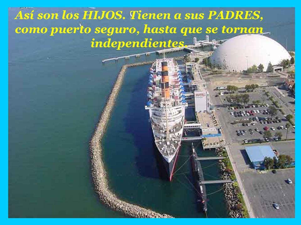 Así son los HIJOS. Tienen a sus PADRES, como puerto seguro, hasta que se tornan independientes.