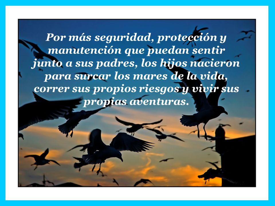 Por más seguridad, protección y manutención que puedan sentir junto a sus padres, los hijos nacieron para surcar los mares de la vida, correr sus prop