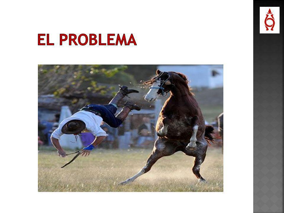 El 27% del total de lesiones deportivas graves en España se deben a la práctica de la equitación.
