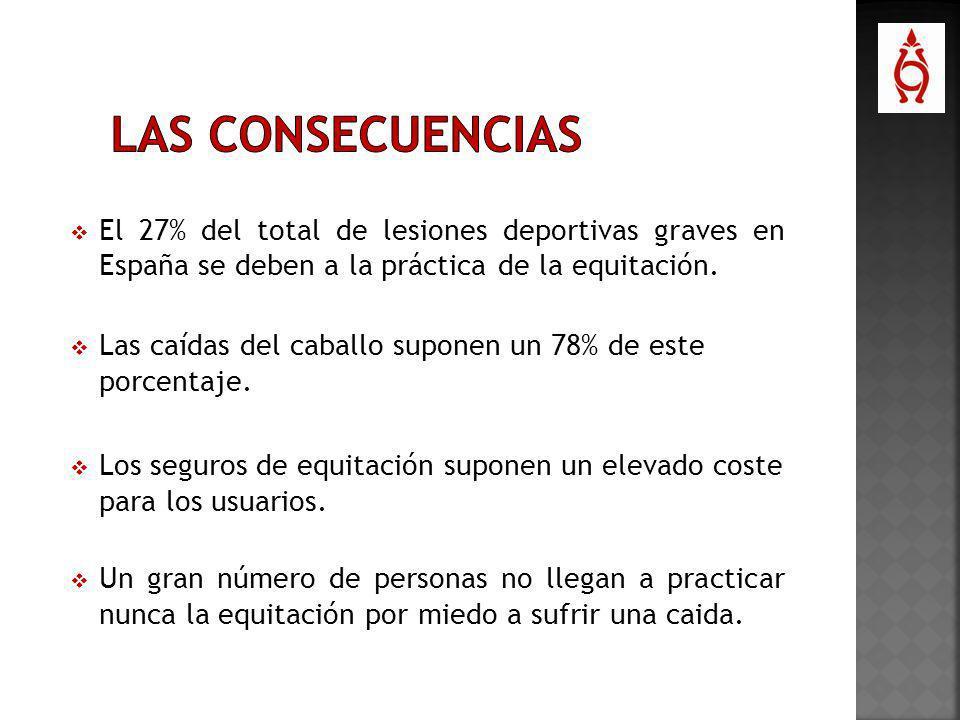 El 27% del total de lesiones deportivas graves en España se deben a la práctica de la equitación. Las caídas del caballo suponen un 78% de este porcen