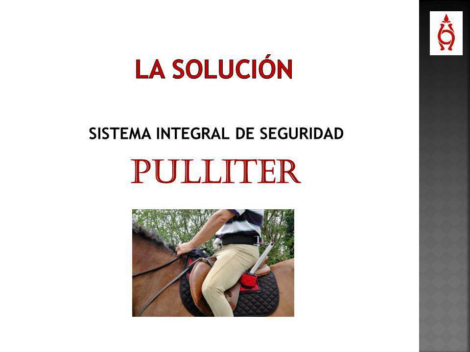 SISTEMA INTEGRAL DE SEGURIDAD PULLITER