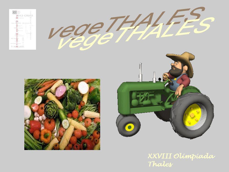 XXVIII Olimpiada Thales