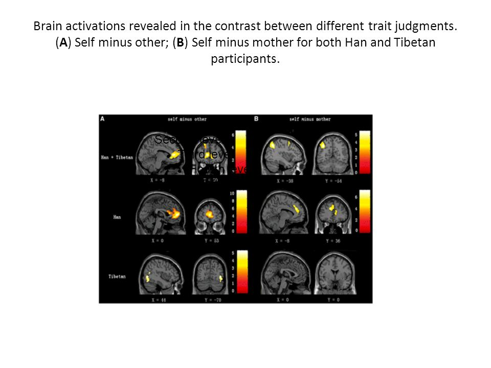 Brain activations revealed in the contrast between different trait judgments. (A) Self minus other; (B) Self minus mother for both Han and Tibetan par