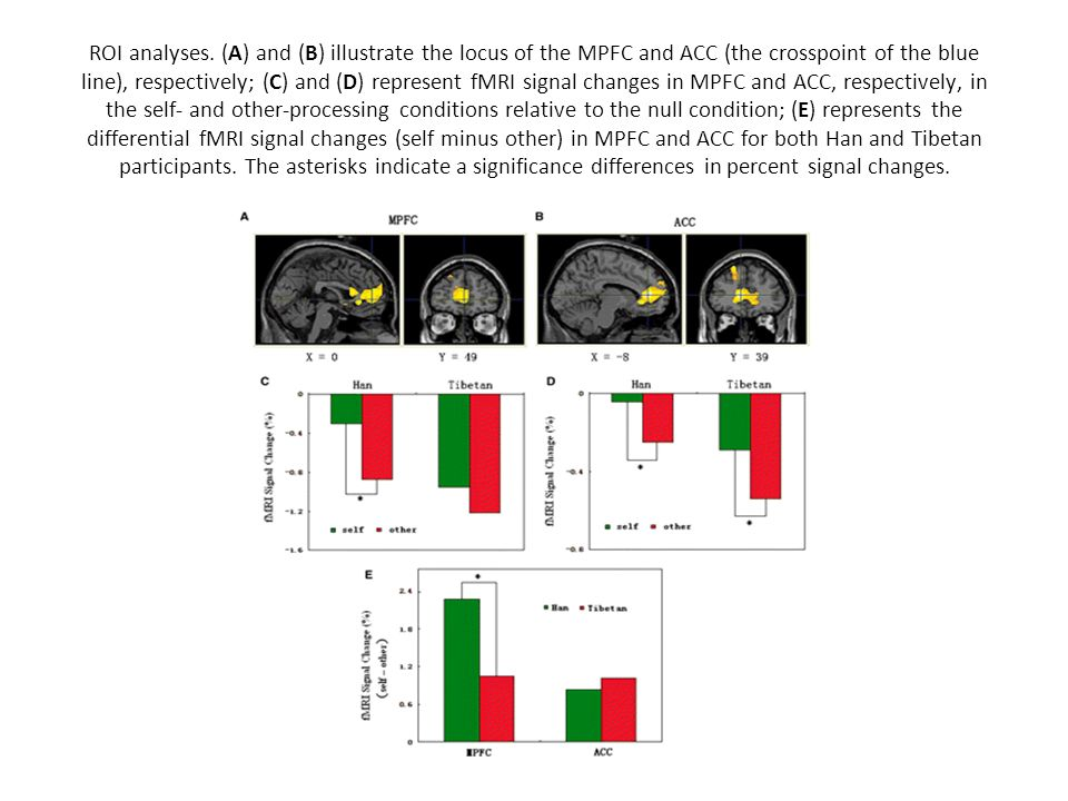 ROI analyses. (A) and (B) illustrate the locus of the MPFC and ACC (the crosspoint of the blue line), respectively; (C) and (D) represent fMRI signal