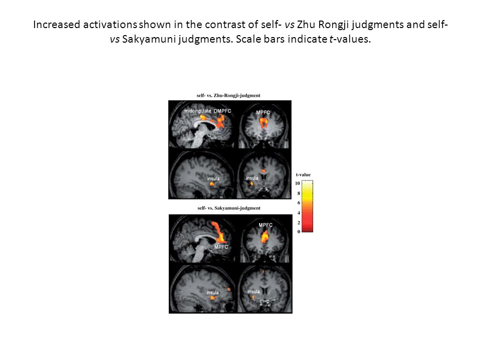 Increased activations shown in the contrast of self- vs Zhu Rongji judgments and self- vs Sakyamuni judgments. Scale bars indicate t-values.