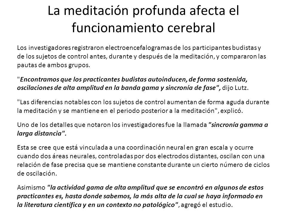 La meditación profunda afecta el funcionamiento cerebral Los investigadores registraron electroencefalogramas de los participantes budistas y de los s