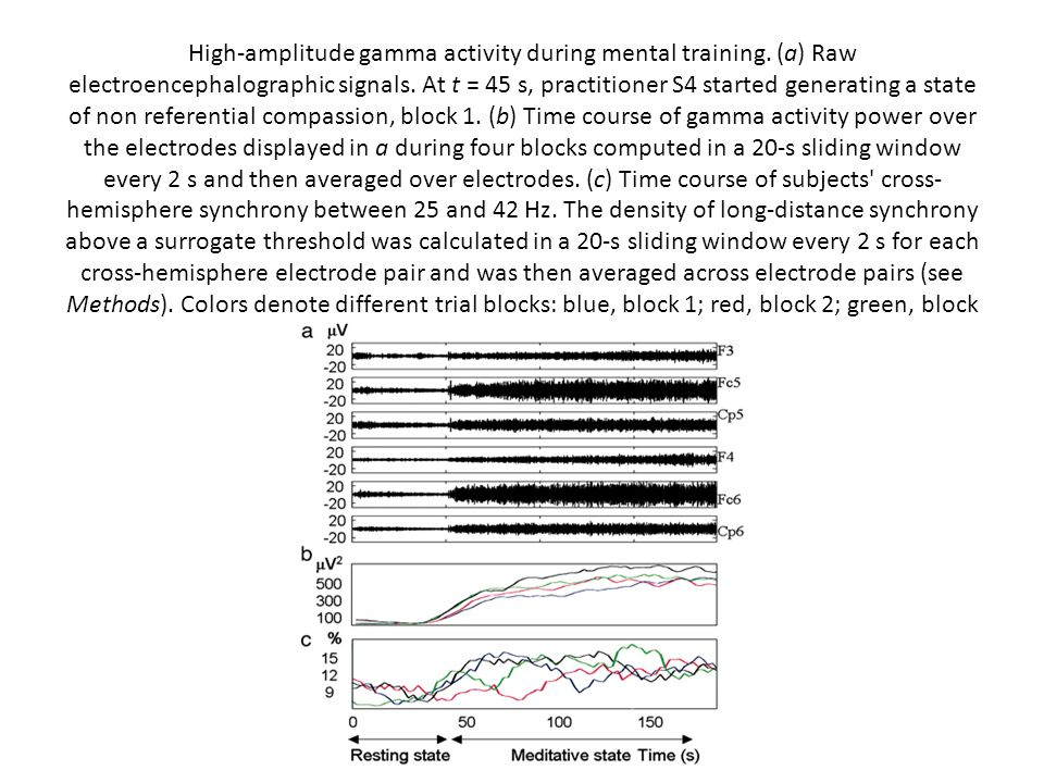 High-amplitude gamma activity during mental training. (a) Raw electroencephalographic signals. At t = 45 s, practitioner S4 started generating a state