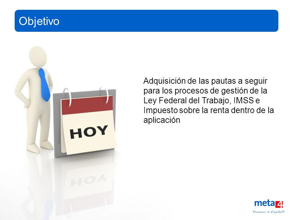13/3/2008Copyright®2008, Meta4 Spain, S.A. All rights reserved Adquisición de las pautas a seguir para los procesos de gestión de la Ley Federal del T