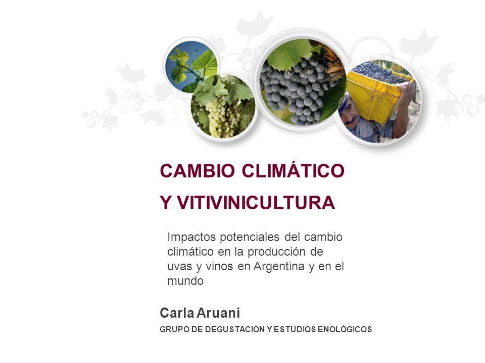 Carla Aruani GRUPO DE DEGUSTACIÓN Y ESTUDIOS ENOLÓGICOS CAMBIO CLIMÁTICO Y VITIVINICULTURA Impactos potenciales del cambio climático en la producción