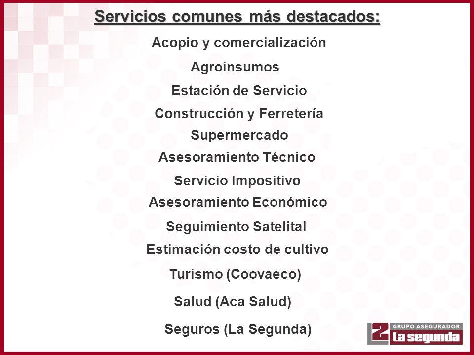 Servicios comunes más destacados: Acopio y comercialización Agroinsumos Estación de Servicio Construcción y Ferretería Supermercado Asesoramiento Técn