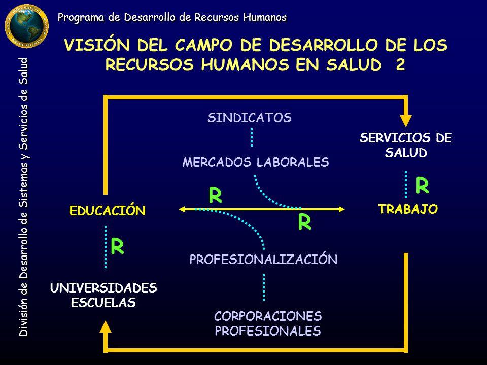 Programa de Desarrollo de Recursos Humanos División de Desarrollo de Sistemas y Servicios de Salud VISIÓN DEL CAMPO DE DESARROLLO DE LOS RECURSOS HUMA