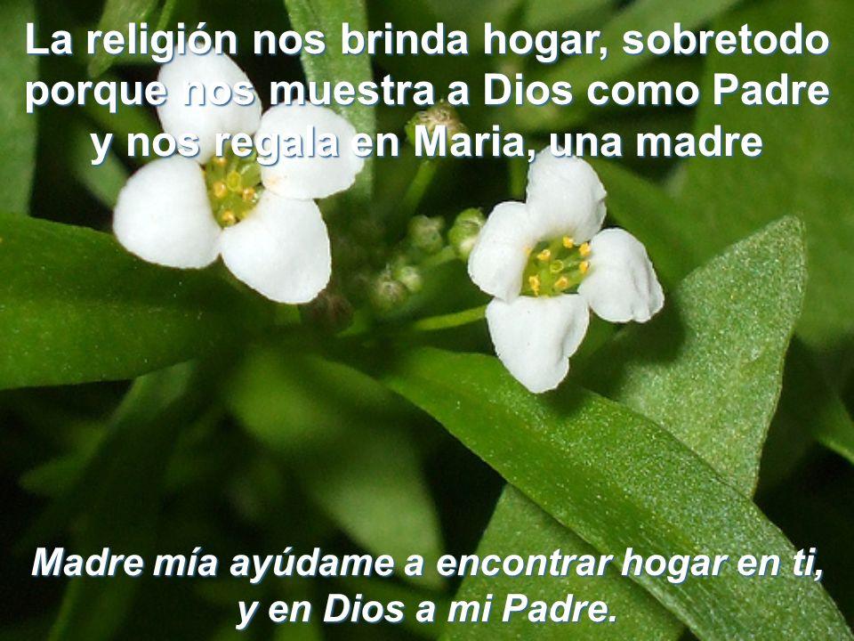 Para asemejarme a la querida Madre de Dios, aspiro a ser más bondadoso en el pensar y más respetuoso en el actuar Pensaré con bondad, en las personas