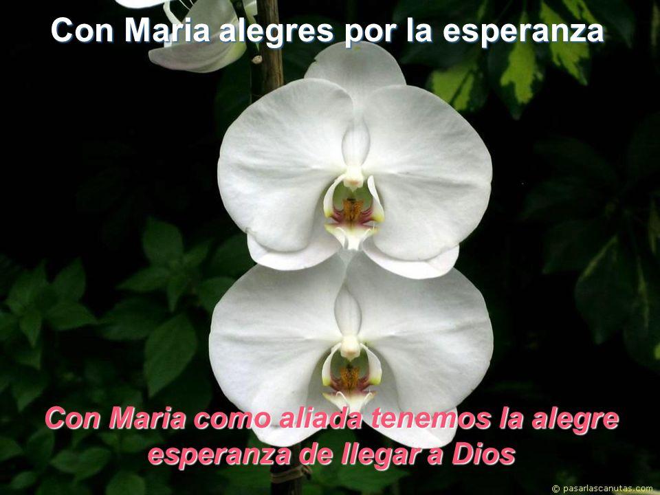 Con Maria alegres por la esperanza Con Maria como aliada tenemos la alegre esperanza de llegar a Dios