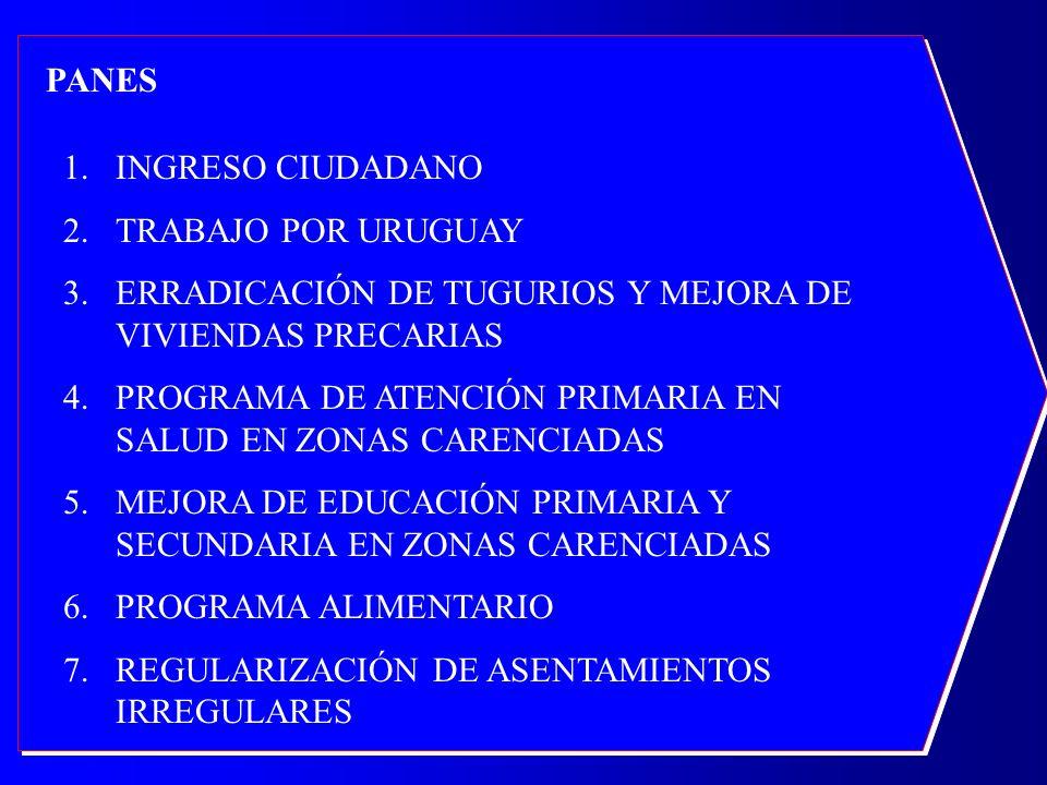 PANES 1.INGRESO CIUDADANO 2.TRABAJO POR URUGUAY 3.ERRADICACIÓN DE TUGURIOS Y MEJORA DE VIVIENDAS PRECARIAS 4.PROGRAMA DE ATENCIÓN PRIMARIA EN SALUD EN ZONAS CARENCIADAS 5.MEJORA DE EDUCACIÓN PRIMARIA Y SECUNDARIA EN ZONAS CARENCIADAS 6.PROGRAMA ALIMENTARIO 7.REGULARIZACIÓN DE ASENTAMIENTOS IRREGULARES