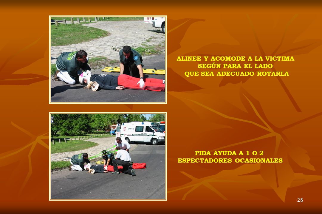 28 ALINEE Y ACOMODE A LA VICTIMA SEGÚN PARA EL LADO QUE SEA ADECUADO ROTARLA PIDA AYUDA A 1 O 2 ESPECTADORES OCASIONALES