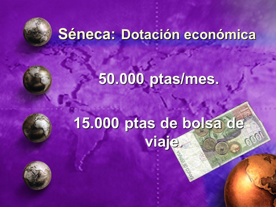 50.000 ptas/mes. 15.000 ptas de bolsa de viaje. Séneca: Dotación económica