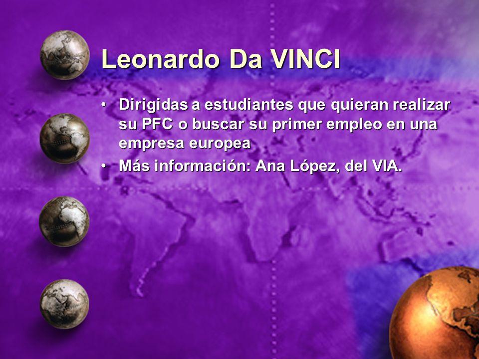 Leonardo Da VINCI Dirigidas a estudiantes que quieran realizar su PFC o buscar su primer empleo en una empresa europeaDirigidas a estudiantes que quie