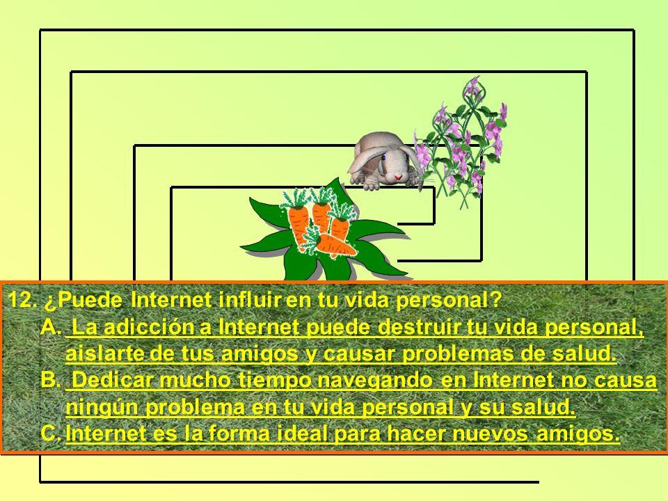 12. ¿Puede Internet influir en tu vida personal. A.