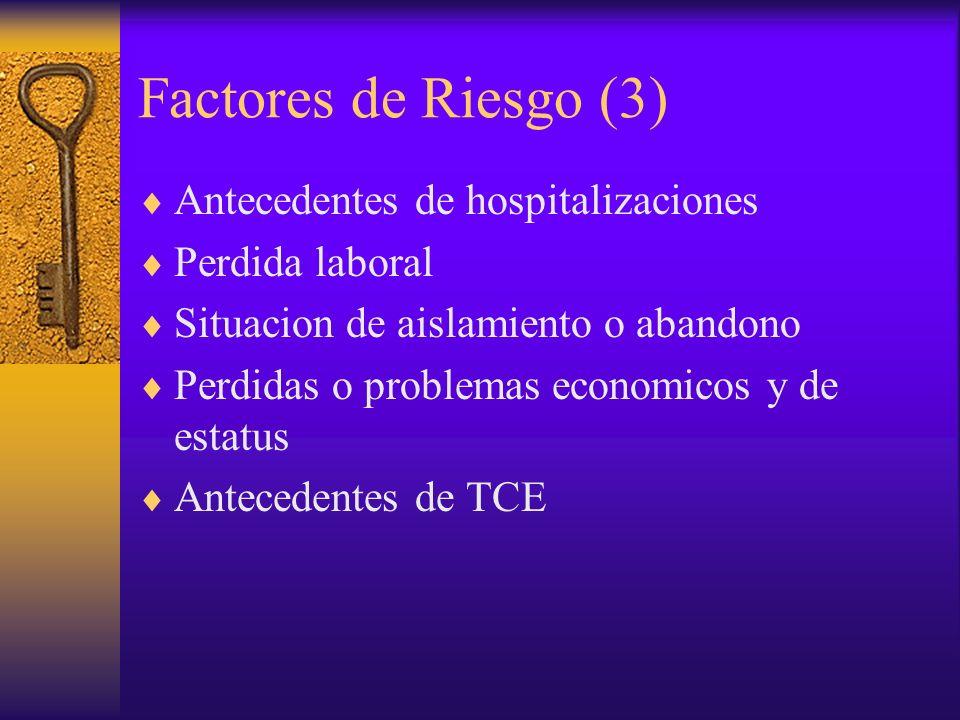 Factores de Riesgo (3) Antecedentes de hospitalizaciones Perdida laboral Situacion de aislamiento o abandono Perdidas o problemas economicos y de esta