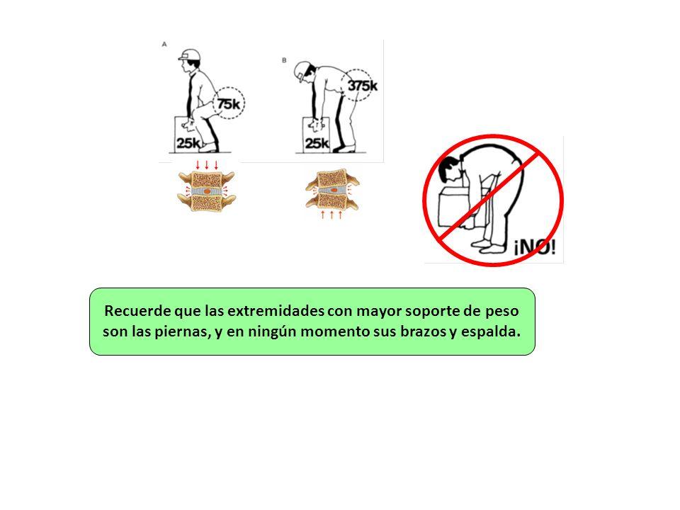 Recuerde que las extremidades con mayor soporte de peso son las piernas, y en ningún momento sus brazos y espalda.